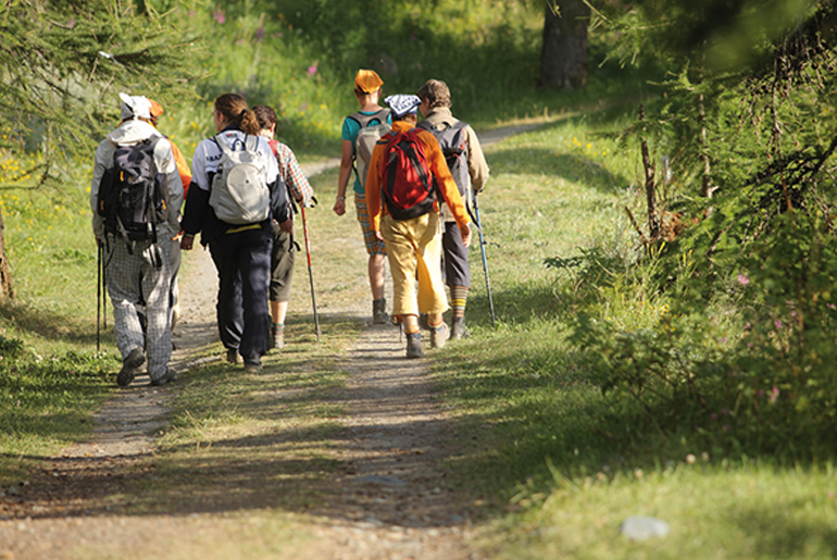 men and women walking, trekking